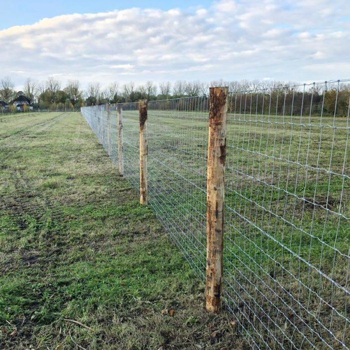 Alpaca farm afrastering